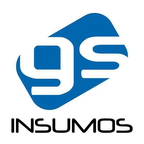 GS INSUMOS